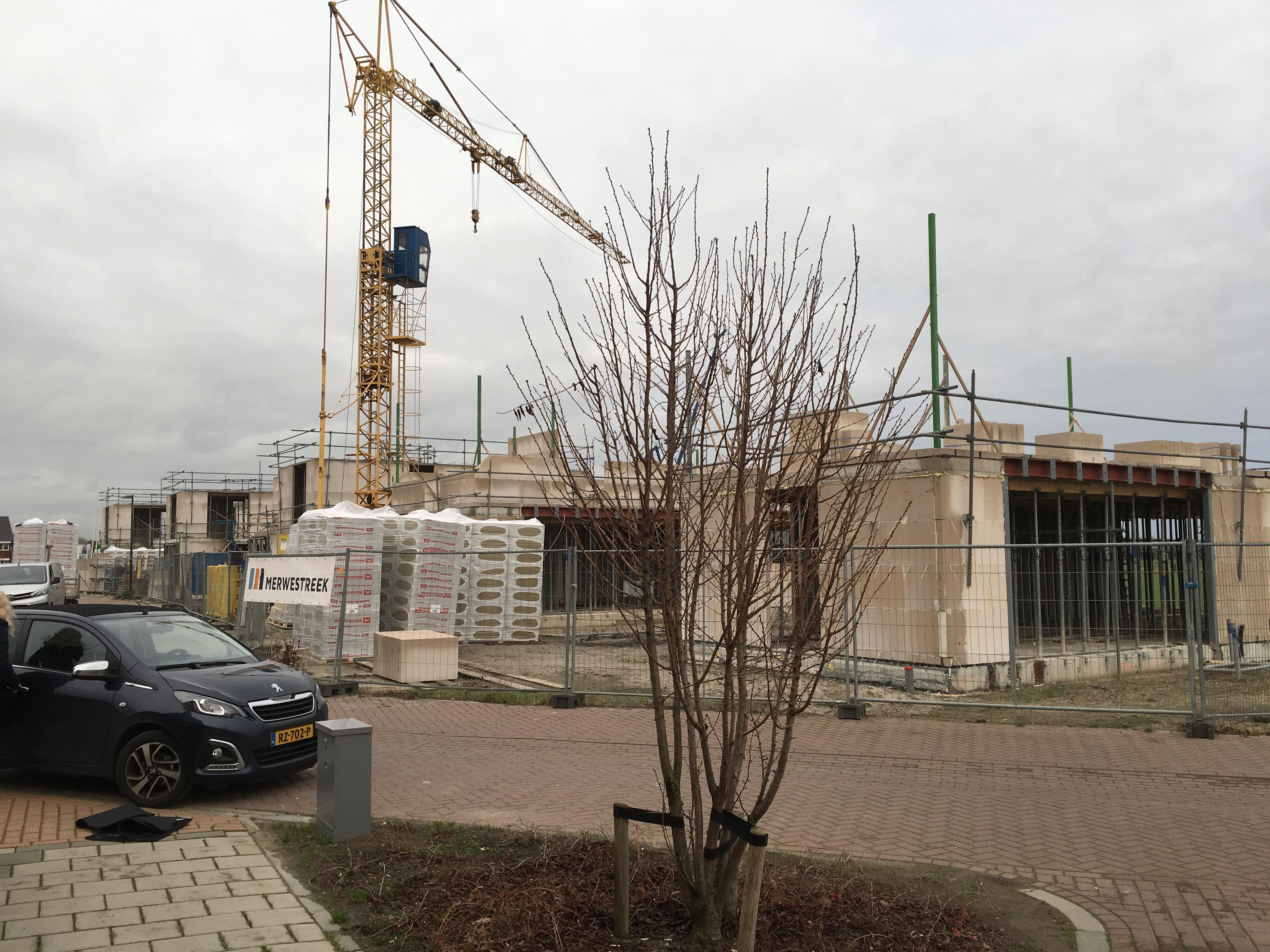 Voortgang SEDUM Gorinchem kavel 8 t/m 13. 1